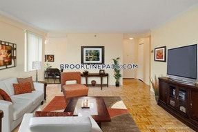 Brookline Apartment for rent 1 Bedroom 1 Bath  Washington Square - $2,500